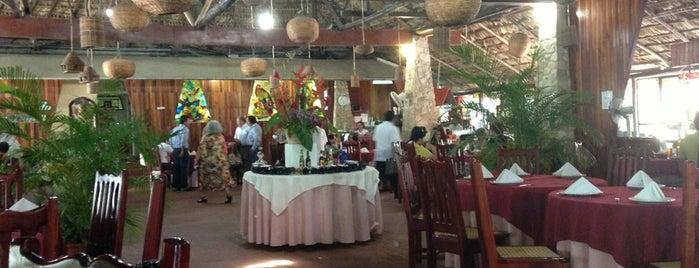 Restaurante la Selva is one of Palenque, Chiapas.