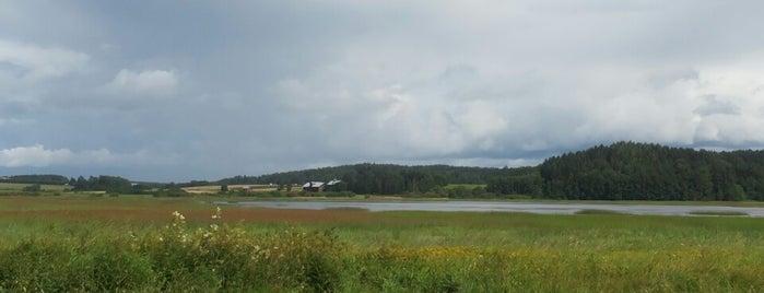 Vanjärven lintutorni is one of Lieux qui ont plu à Juha.