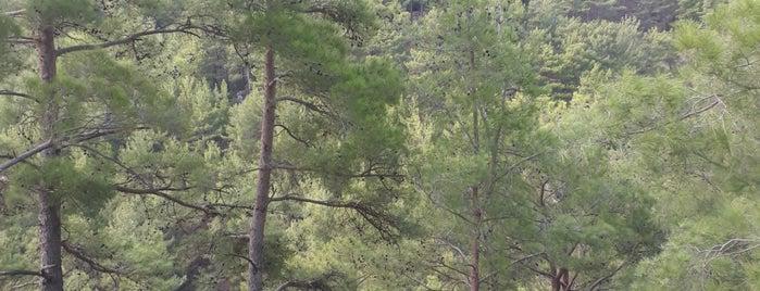 Toros Dağlarının Tepesi is one of สถานที่ที่บันทึกไว้ของ Yasemin Arzu.