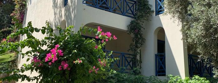 Club Med Bodrum is one of Locais salvos de Yildiz.