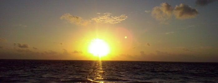 Arrecife Puerto Morelos is one of สถานที่ที่ Emmanuel ถูกใจ.