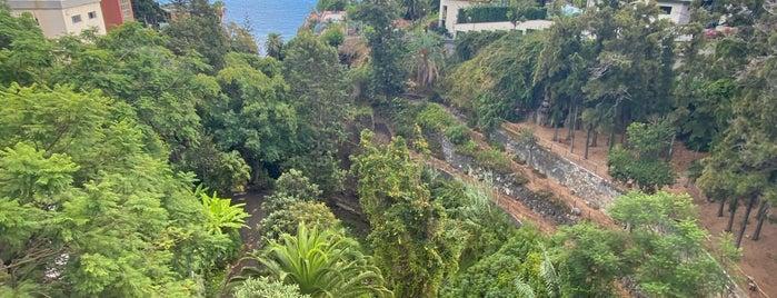 Funchal is one of культур-мультур.