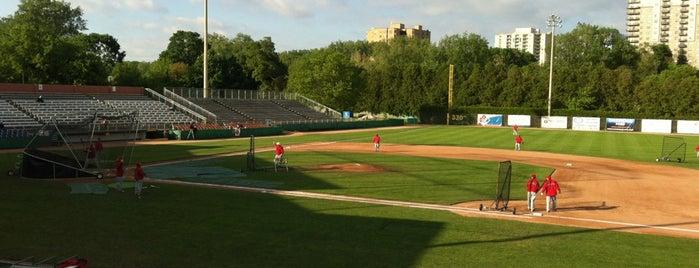 Labatt Park is one of Independent League Stadiums.