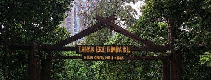 Bukit Nanas Forest Reserve is one of KL.