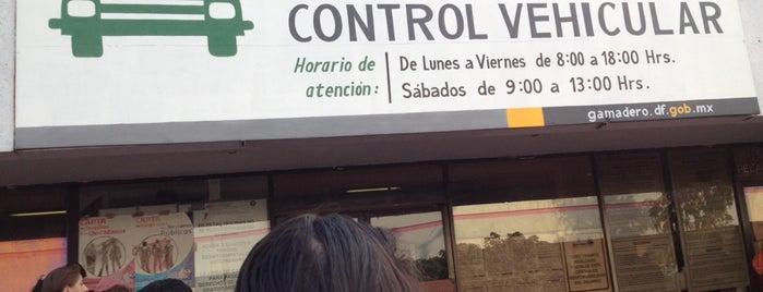 Modulo De Licencias Y Control Vehicular GAM is one of Tempat yang Disukai Chio.