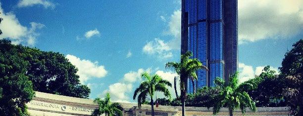 Museo de Ciencias Naturales de Caracas is one of Lugares Visitados.