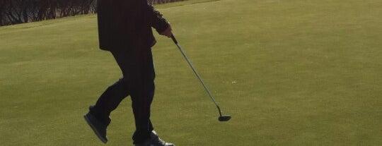 Halla Greens Golf Course & Practice Range is one of Ben : понравившиеся места.