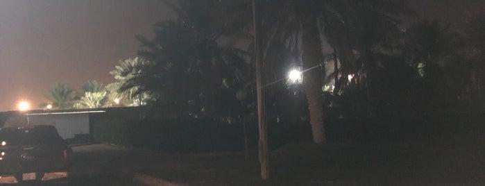 استراحة  عبد الرحمن بن عبدالعزيز السكيت is one of Ahmedさんのお気に入りスポット.