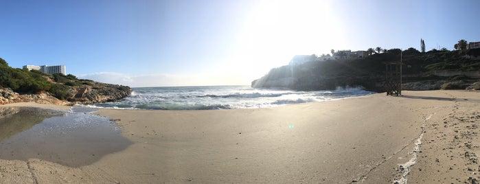 Playa Domingos Petit is one of Nick 님이 좋아한 장소.
