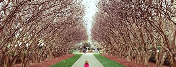 Dallas Arboretum and Botanical Garden is one of Posti che sono piaciuti a barbie.