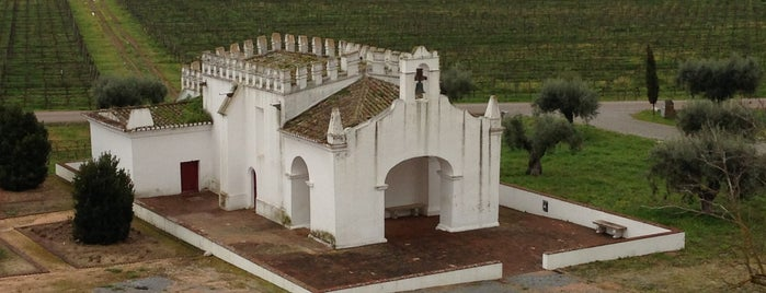 Herdade do Esporão is one of Wine World.