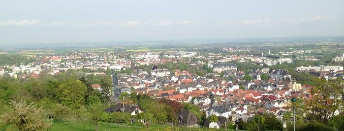 Johannisberg is one of สถานที่ที่ MOTORDIALOG ถูกใจ.
