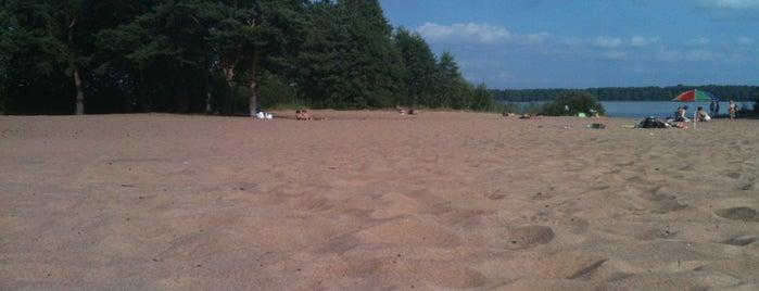 Пляж «Белая Гора» is one of Сестрорецк и побережье Финского залива.