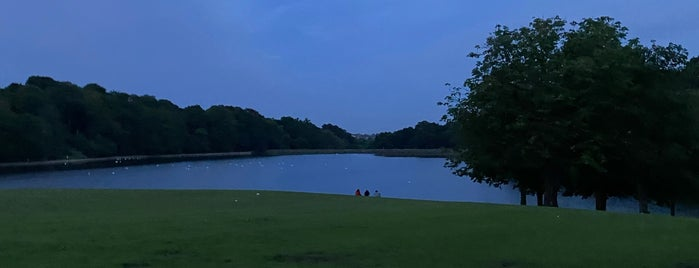 Roundhay Park Lake is one of สถานที่ที่ Victor ถูกใจ.