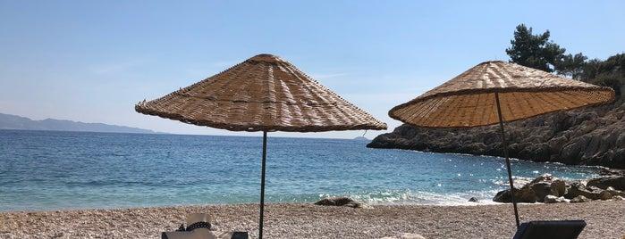 Seyrekcakil Plaji is one of antalya rota.