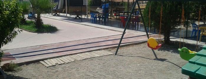 Ardıç çay bahçesi is one of สถานที่ที่ Yunus ถูกใจ.