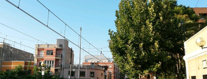 Alberic is one of Municipios de la Provincia de Valencia..