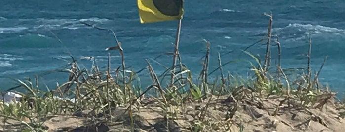 Stuart Beach is one of Del : понравившиеся места.