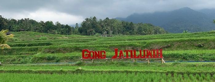 Gong Jatiluwih is one of Bali&Gili.