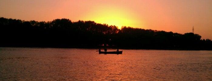 Delta Dunării / Danube Delta is one of UNESCO World Heritage Sites in Eastern Europe.