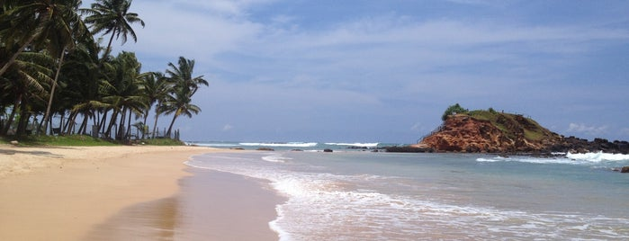 Mirissa Beach is one of Sri Lanka.