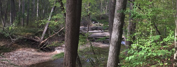Locust Grove Nature Center is one of Outdoors & Recreation.
