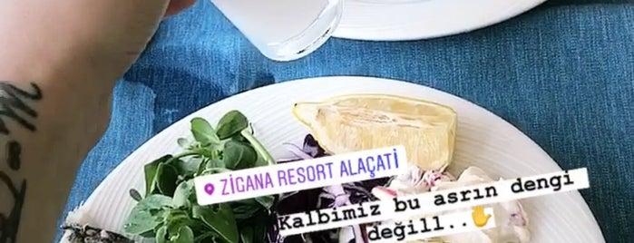 Zigana Alaçatı Resort Otel is one of Posti che sono piaciuti a Turusan.