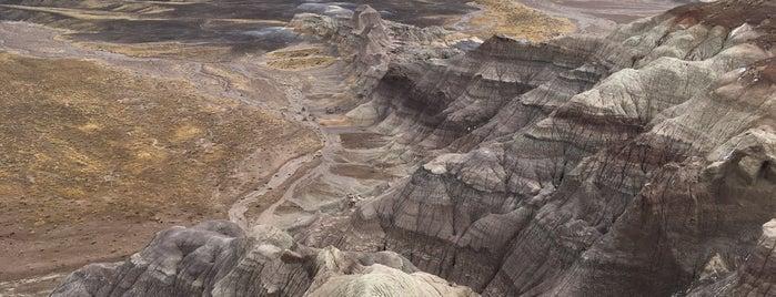Blue Mesa Trail is one of Lugares favoritos de Davide.