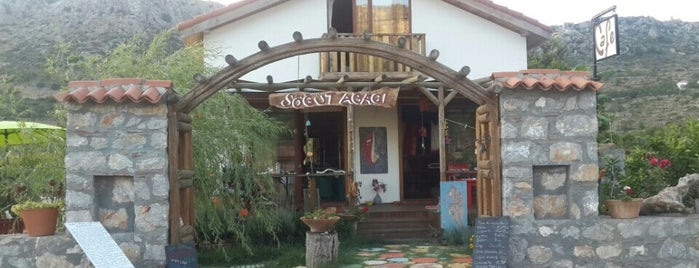 Söğüt Ağacı Cafe & Atölye is one of 2019 Marmaris ❤️.