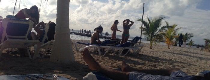 Albatros Beach Club is one of Isla Mujeres.