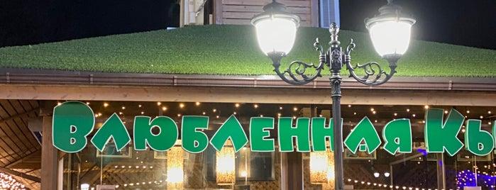 Влюбленная Кыся is one of Olga : понравившиеся места.