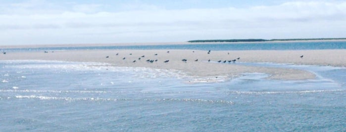 Monomoy National Wildlife Refuge is one of Cape cod.