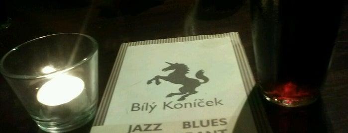 Jazz & Blues Bílý Koníček is one of Prague's best jazz clubs.