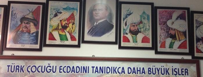 Suleyman Demirel Ilkogretim Okulu is one of Filiz : понравившиеся места.