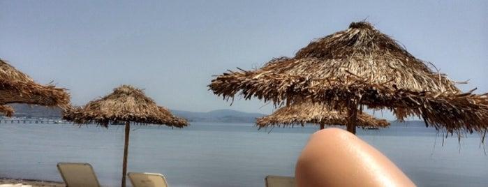 Cocos The Club Otel is one of Posti che sono piaciuti a Sinan.