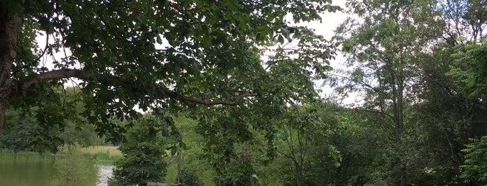 Sendling-Westpark is one of Lieux qui ont plu à Rob.