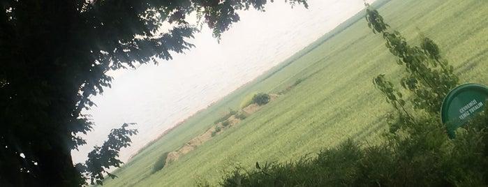 Şarköy Çiftlik is one of Yolüstü Lezzet Durakları.