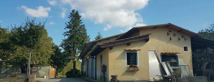 Agriturismo Pian Barucci is one of Via degli Dei.