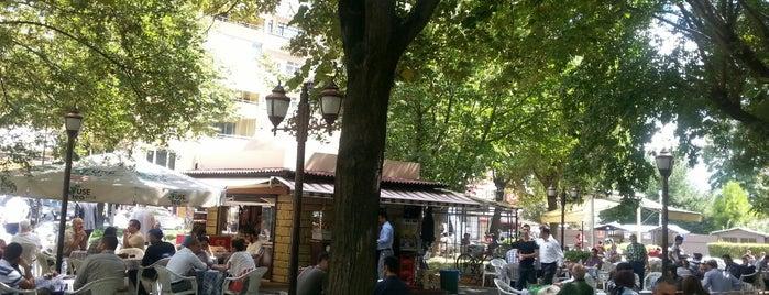Yeni Cuma Çay Bahçesi is one of Erkanさんのお気に入りスポット.