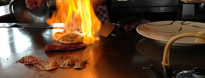 Japans restaurant Sui Sha Ya is one of alimentarsi in olanda.