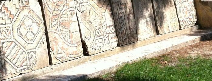 Arkeoloji Müzesi is one of Archaeology Museums of Turkey.