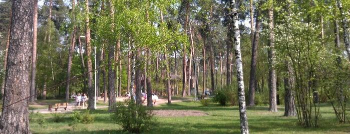 Стадион парк Партизанской славы is one of Lieux sauvegardés par Ksenia.