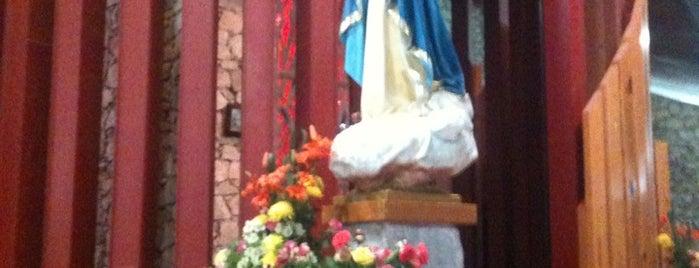 Santa María Madre de la Iglesia is one of Locais curtidos por David.