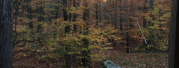 Wildwood is one of Lugares favoritos de Hunter.