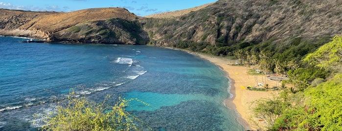 Hanauma Bay is one of Oahu Faves.
