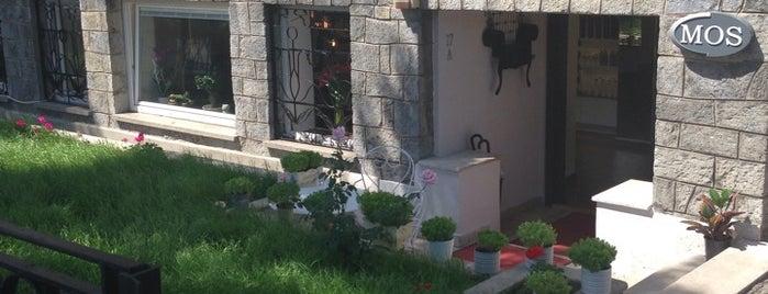Bebek Mos Kuaför Salonu is one of สถานที่ที่ Eser Ozan ถูกใจ.