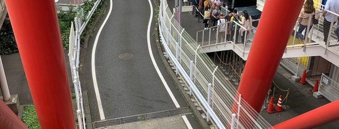 チームラボボーダレス is one of Tokyo.