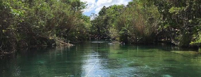 Cenote Escondido is one of Caribe Mexicano.