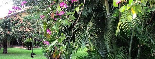 Água Boa is one of Mato Grosso.