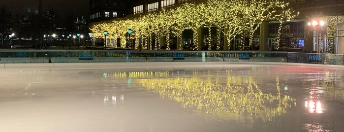 The Rink at Brookfield Place is one of NY'ın En İyileri 🗽.